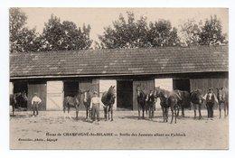 86  CHAMPAGNE-St-HILAIRE  -  Haras De...  -  Sortie Des Juments Allant Au Paddock - Autres Communes