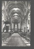Hamme - Binnenzicht Kerk St. Pieters In De Banden - Fotokaart - Nieuwstaat - Hamme