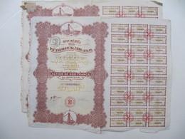 2 X Actions - Société Des Pétroles Milano - Tourcoing, 1920 - Pétrole