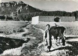AFGHANISTAN(BAMYAN) - Afghanistan