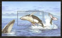Ascension 2009  Yvertn° Bloc 63 *** MNH Cote 9,00 Euro Faune Marine Baleines Walvissen - Ascension (Ile De L')
