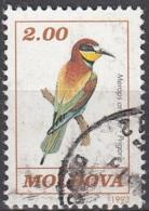 Moldova 1993 Michel 56 O Cote (2008) 0.30 Euro Guêpier D'Europe Cachet Rond - Moldavie