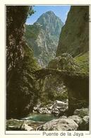 CP Espagne 1993? -  Picos De Europa, Puente De La Jaya - Cantabria - Cantabria (Santander)