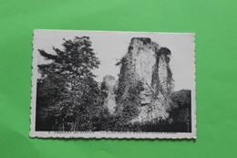 CPA  72  FRESNAY SUR SARTHE LE JARDIN PUBLIC ET RUINES DE L ANCIEN CHATEAU - France