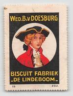"07441 ""WED. B. V. DOESBURG - BISCUIT FABRIEK - DE LINDEBOOM"" ERINN. ORIG., MAI APPLICATO - Erinnofilia"