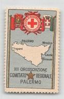 """07443 """"CROCE ROSSA ITALIANA - XII CIRCOSCRIZIONE - COMITATO REGIONALE DI PALERMO"""" ERINN. ORIG., MAI APPLICATO - Erinnophilie"""