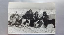 RUSSIA. Far East. Kamchatka.  Chukcha With Laika Dog Hunting - Rare Postcard 1950s - Russia