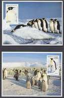 Chile 1992 Antarctica / Penguins 2 Postcards (with Reprint Of The Stamps) Unused (40107) - Zonder Classificatie