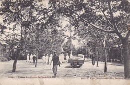 Postcard Boma Avenue Royale Vers La Place De La Marine Congo DRC Undivided Back My Ref  B12390 - Belgian Congo - Other
