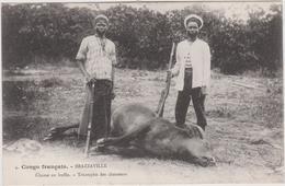 Afrique : CONGO  BRAZZAVILLE :  Chasse ,  Triomphe  Des  Chasseurs   Buffle - Congo - Brazzaville