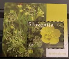 Slovenia, 2009, Mi: Block 42 (MNH) - Other