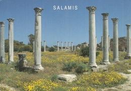 VIEW OF SALAMIS, KYRENIA, NORTH CYPRUS. - Cyprus