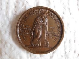 Medaille Ferdinand Philippe Louis C.H Duc D'Orléans 1842 , Par Borrel - France