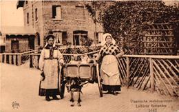 1 CPA  C1920 éd STAR Hondenkar ( Attelage De Chiens Flamand, Hund, Dog) Vlaamse Melk Boerinenen 2542 DE GRAEVE TB - Dogs