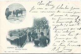CPA 1902 Corrida De Toros Picador Herido - Espagne