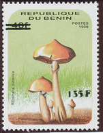 Bénin 2000  (135F/40F  - Champignon  Stropharia )  **  Luxe  -  TRES RARE   -  PROMO - Funghi
