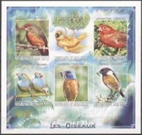 Mali 1999, Animals, Birds, 6val In BF IMPERFORATED - Songbirds & Tree Dwellers