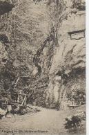 AK 0009  Eingang In Die Steinwandklamm Bei Muggendorf - Verlag Würthle & Sohn Um 1910-20 - Wiener Neustadt