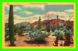 FLEUR, CACTUS - A DESERT LANDSCAPE, ARIZONA -  TRAVEL IN 1953 -  LOLLESGARD SPECIALTY CO - - Cactus