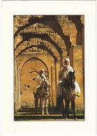 Meknes - Haras De Moulay Ismail - (Maroc) - Meknes