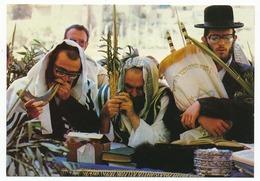CPSM 10.5 X 15 Israël (50) JERUSALEM  Hoshana Rabba Prayer At The Western Wall   Prière De Hoshana Rabba Auprès Du Mur* - Israel