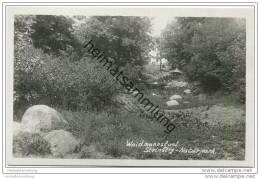Berlin-Waidmannslust - Steinberg - Naturpark - Foto-AK Ca. 1930 - Waidmannslust