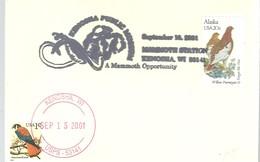 POSTMARKET  USA - Elefantes
