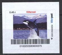 Biber Post Killerwal (48)  G407 - BRD