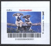 Biber Post Hundewelpen (45)  G417 - BRD