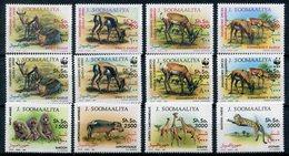 1992- SOMALIA- WWF.-FAUNA -CPL.SET. 12 VAL.-M.N.H.-LUXE ! ! - Somalia (1960-...)
