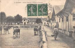 SUIPPES - Ferme Hippique - Ecuries Et Parcours - France
