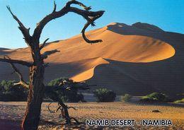 1 AK Namibia * Namib Desert Im Namib-Naukluft Nationalpark - Der Größte Wildpark Afrikas Und Der Viertgrößte Der Welt * - Namibia