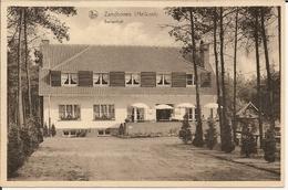 Zandhoven (Heikant) - Berkenhof 19.. (Geanimeerd) - Zandhoven