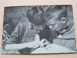 CHIROBIVAK ' T Is Knap Beste Groeten Alles OK ( Chiro ) Anno 1962 ( Zie Foto's ) ! - Scoutisme