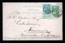 5 C. Ganzsache Mit 5 C. Zufrankiert Ab Brüssel Nach NEUKALEDONIEN - 1893-1907 Armoiries