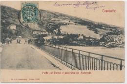 U.351.  CAPOPONTE - Tizzano Val Parma - 1905 - Other Cities