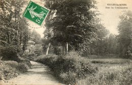 CPA - VEULES-les-ROSES (76) - Aspect Du Quartier Des Cressonnières En 1910 - Veules Les Roses