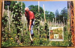 Liechtenstein 2003: Viticulture En 4 Saisons (Printemps) Zu 1253-55 Mi 1311-13 Yv 1252-54 MK-Set CM 214 (Zu CHF 12.50) - Vins & Alcools