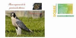 Spain 2013 - Aves Rapaces De La Península Ibérica (Birds Of Prey Prepaid Cover) - Águilas & Aves De Presa