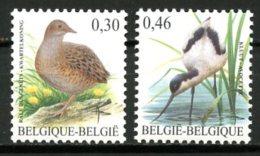BE   3478 - 3479   XX   ---   Oiseaux Buzin  ::  Râle Des Genêts Et Avocette - Unused Stamps