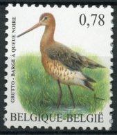 BE   3502   XX   ---   Oiseau Buzin : Barge à Queue Noire - Unused Stamps