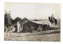 DEVANT LA HAÏMOH OU TENTE NOMADE SERIE COLLECTION SAHARIENNE - Algérie