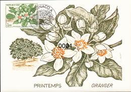 1790 à 1793 4 Saisons De L'oranger 7/11/1991 - Maximumkarten (MC)