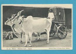 CPA Inde India Britannique Anglaise Non Circulé Charrette à Bœuf JAIPUR - Inde