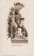 CPA  - Portrait Indien -The Last Of The Tribe N° 115 - Carte Précurseur - Indiaans (Noord-Amerikaans)