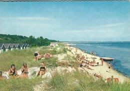 Falsterbo Stranden  -  The Beach.  Sweden.      # 07871 - Sweden