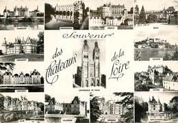 CPSM Châteaux De La Loire                                             L2659 - France