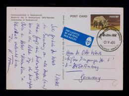 SWA Rhinocéros Wild Animals Savage Animaux Faune Postcards Memorial Day Namibia Gibier Pmk Sp5403 - Rhinozerosse