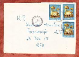 Brief, MeF Schmarotzer-Roehrling, Ostrow Mazowiecka Nach Kiel 1980 (56133) - Briefe U. Dokumente