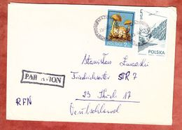 Luftpost, MiF Schmarotzer-Roehrling U.a., Ostrow Mazowiecka Nach Kiel 1980 (56136) - Briefe U. Dokumente